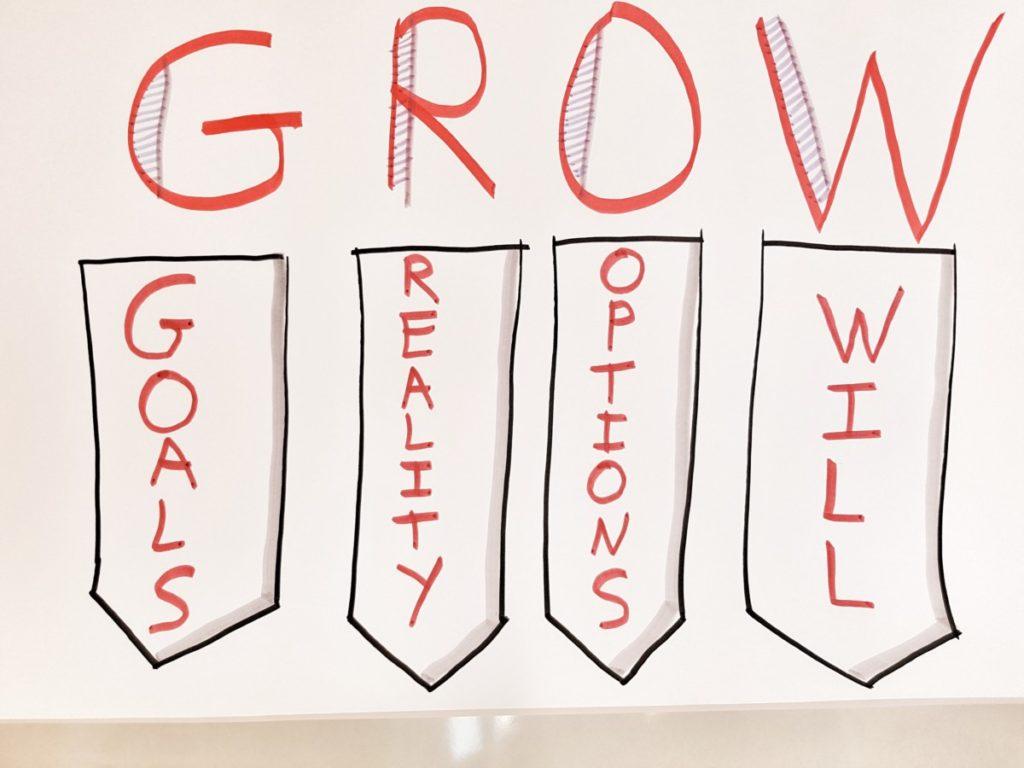 Objetivo Equipo. GROW